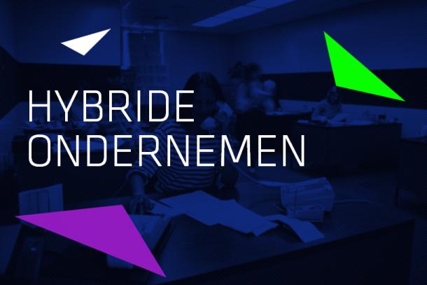 Artikel:Hybride ondernemen